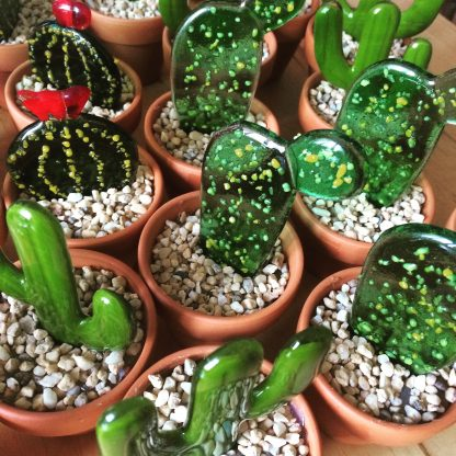 Fused glass succulent collection