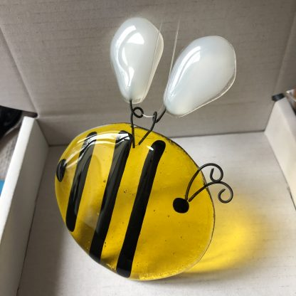 Glass bee transparent wings flat